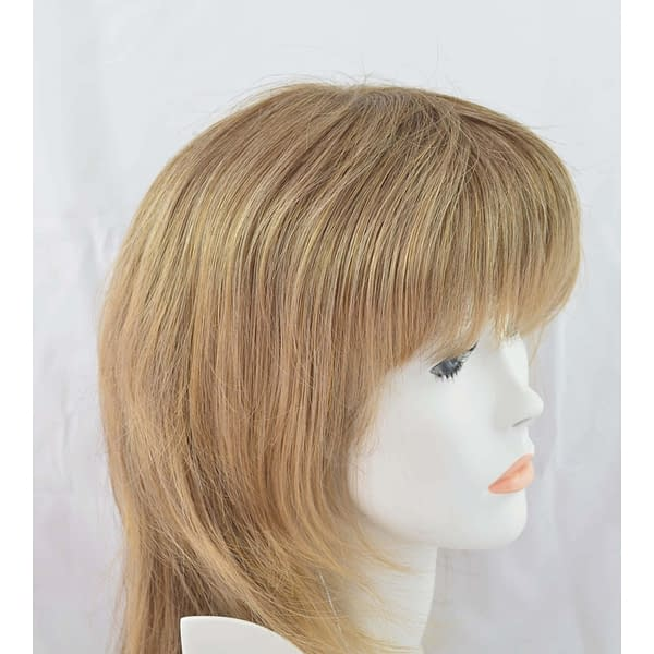 24/18T Wig Colour by Gisela Mayer
