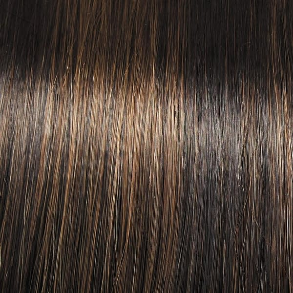 Shadow Shades -SS4/10 SS Iced Java Wig Colour by Raquel Welch