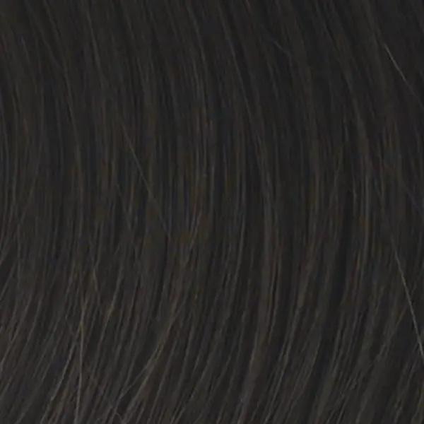 R4 Midnight Brown Wig Colour by Raquel Welch