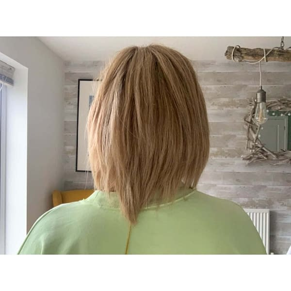 Sophia Wig by Jon Renau   Remy Human Hair Lace Front Wig