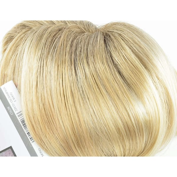 22H/22+12 Wig Colour by Gisela Mayer