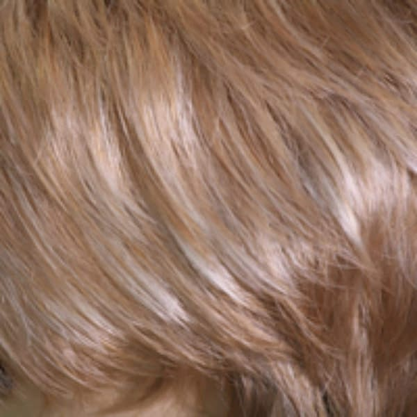 Champaign Synthetic Colour by Wig Pro