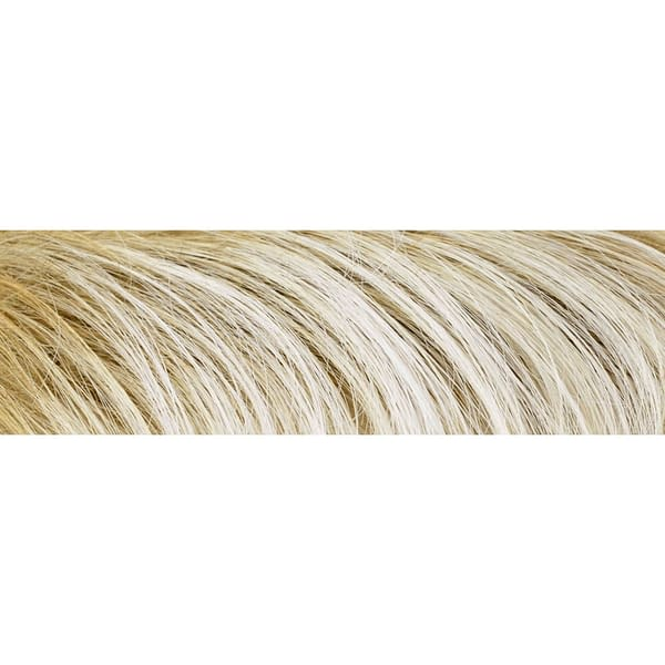 1001/22-20+14 Ash Blond Rooted Gisela Mayer Wig Colour